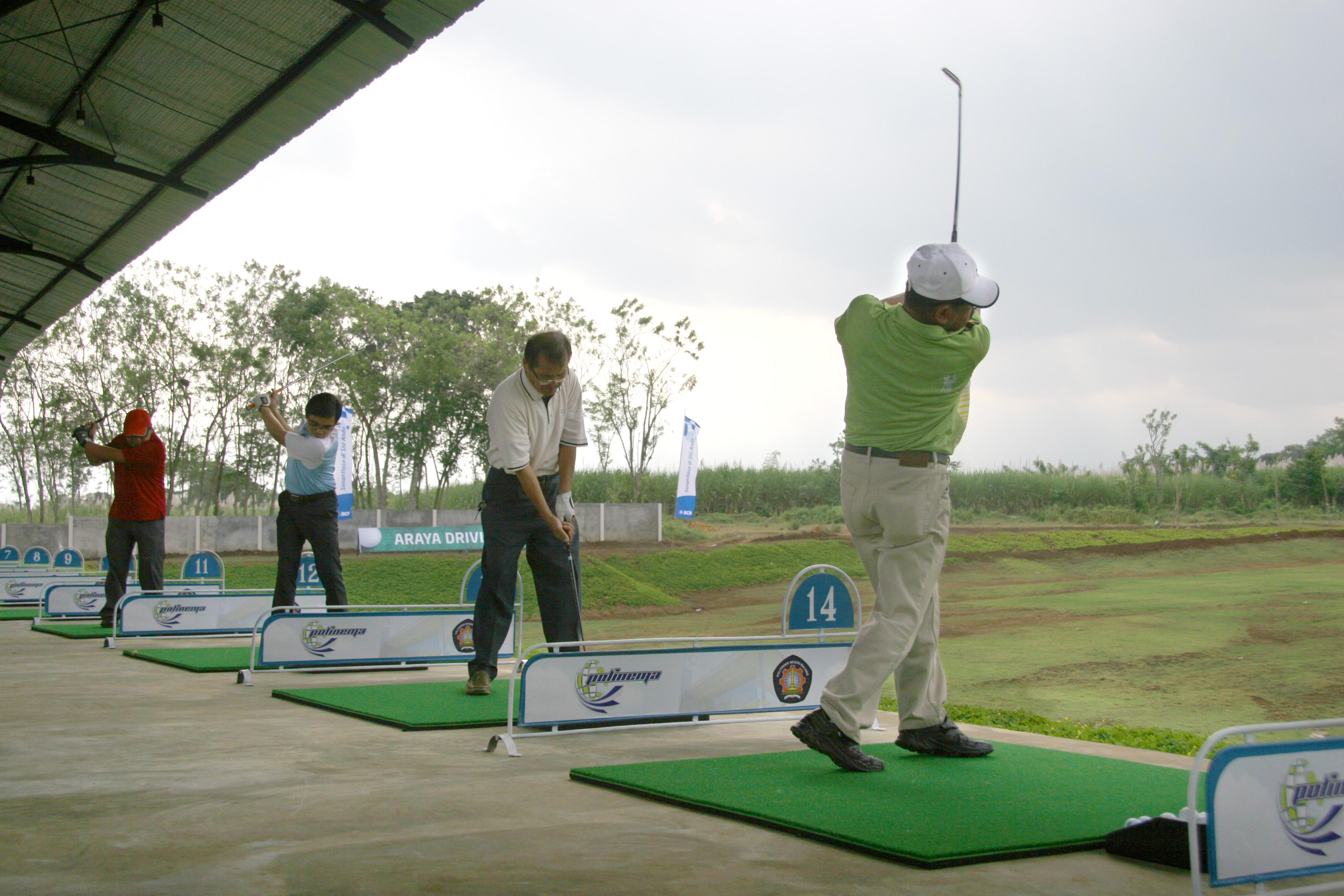 Hasil gambar untuk golf driving